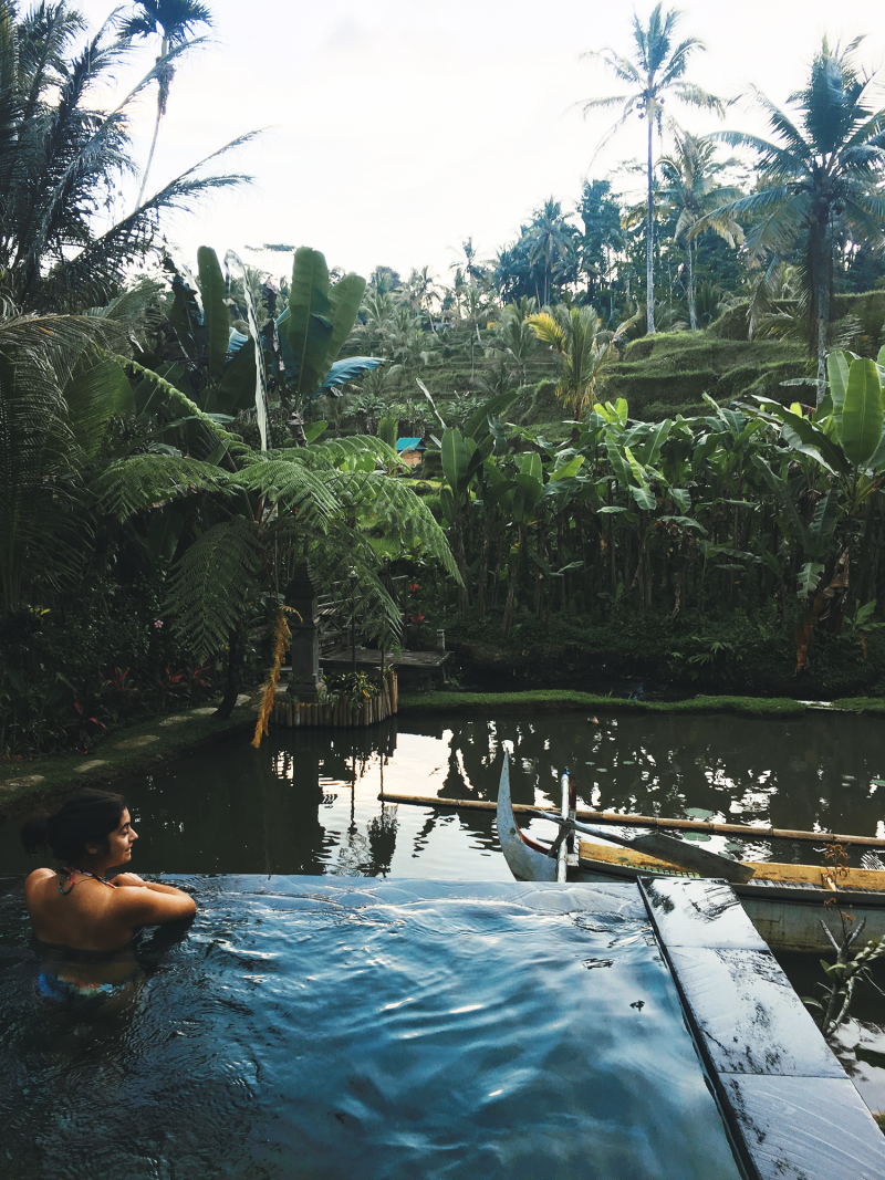 Private pool; Ubud, Bali