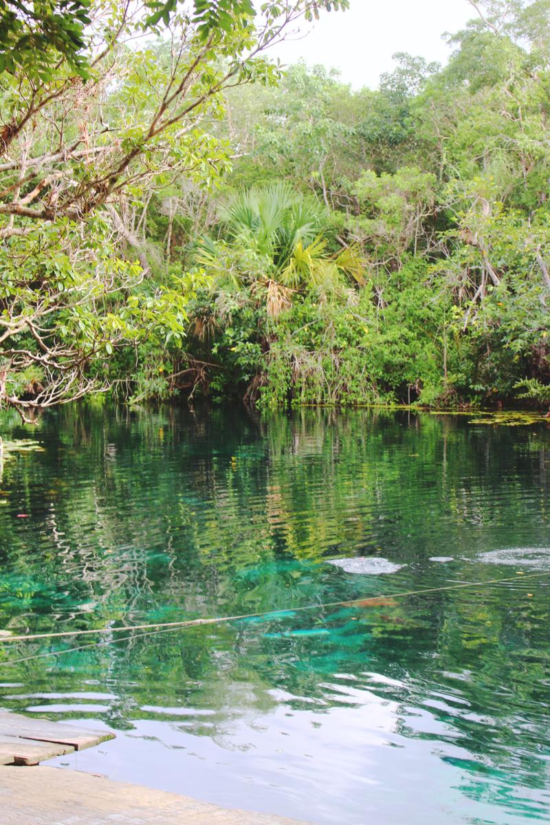 Tulum cenote Mexico Yucatan