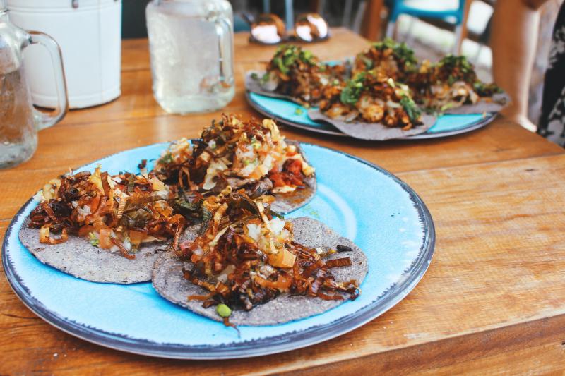 taco mexico holbox food island paradise