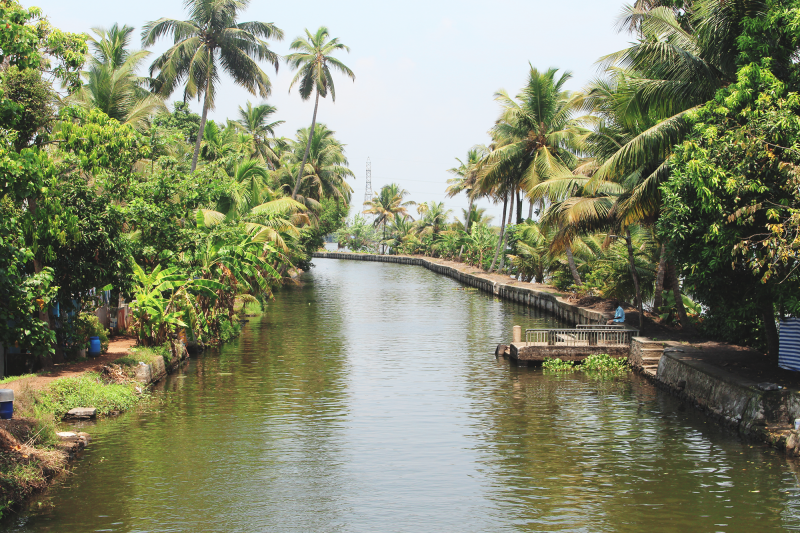 Kerala Alleppey India